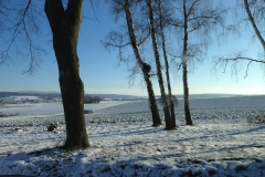 Natur Blankenheim (1)